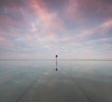 Sunken Jetty  by Douglas  Latham