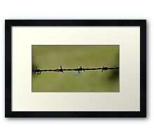 Wooly Wire Framed Print