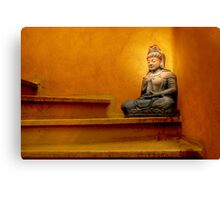 Steps to Enlightenment Canvas Print