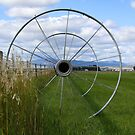 Circles by Paul Morgan
