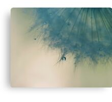 sometimes you only need one wish Canvas Print