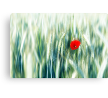 the red dot (light) Canvas Print
