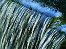Waterfall  by Marcia Rubin