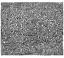 The maze Photographic Print
