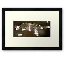 Beautiful Baryonyx Framed Print