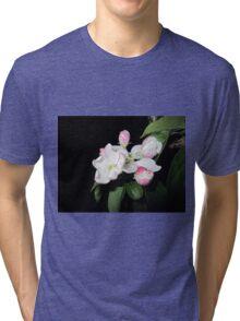 Apple at night 3 Tri-blend T-Shirt