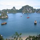 Halong Bay Junk Boats. by machka