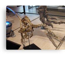 Random Velociraptor Metal Print