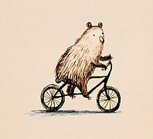 Cycling Bear by Sophie Corrigan
