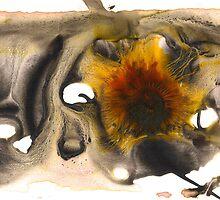 inner-workings ... # 3 by Sam Fonte