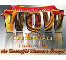 Beautiful Banners Group Challenge Banner Photographic Print