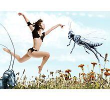 Jump like a cricket Photographic Print
