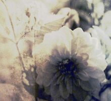 Vintage Flower 1 by Claire Elford