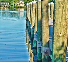 Standing on the dock by Nancy Rohrig