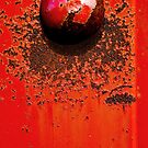 Red to Rust by Susana Weber