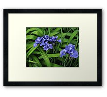 Purple and Green Floral Framed Print
