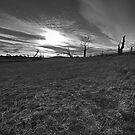Hole in the sky by Jocelyn  Parry-Jones
