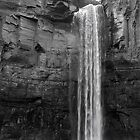 Taughannock Falls by Mark  Reep