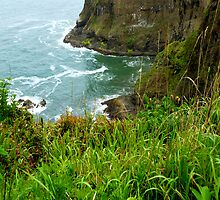 Oregon's Seaside Cliffs In Springtime by Elaine Bawden