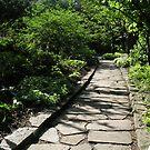 Garden Path by Mark  Reep