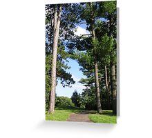 Cornell Arboretum 2 Greeting Card
