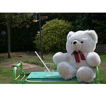 Teddy in the garden Photographic Print