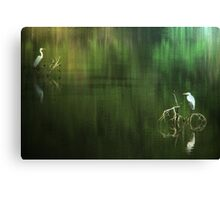Egrets In Reflection Canvas Print