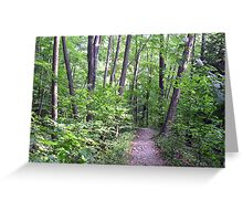 Six Mile Creek 1 Greeting Card