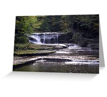 Treman Park 1 Greeting Card