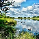 Summerlake Skyreflections by ienemien