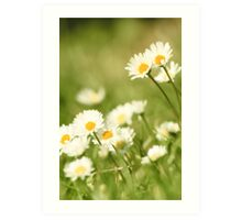 Time to mow the lawn? Art Print