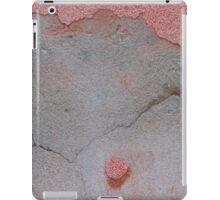 background wall iPad Case/Skin