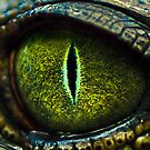 Eye of the Crocodile II [Print &amp; iPad Case] by Damienne Bingham