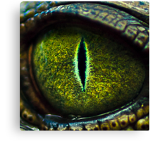 Eye of the Crocodile II [Print & iPad Case] Canvas Print