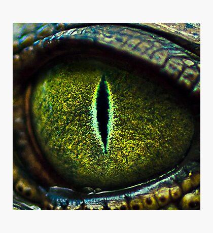 Eye of the Crocodile II [Print & iPad Case] Photographic Print