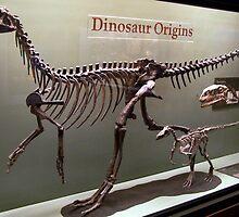 Ancient Wannanosaurus by skeletonsrus