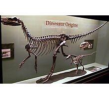 Ancient Wannanosaurus Photographic Print