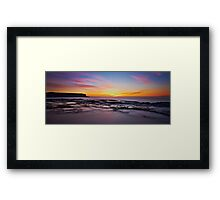 Chameleon Dawn Framed Print