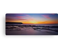 Chameleon Dawn Canvas Print