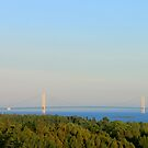 Mighty Mac by Joy Fitzhorn