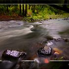 All Rivers Run by Kym Howard