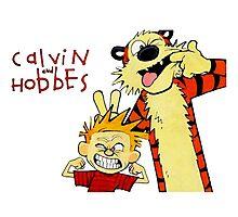 Calvin & Hobbes Photographic Print