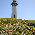 Pigeon Point Lighthouse Flowers by NancyC