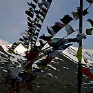 mountain prayers. kunzum pass, northern india by tim buckley | bodhiimages