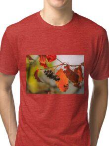 autumn berries Tri-blend T-Shirt