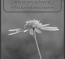 Never Give Up Hope by Donna Keevers Driver
