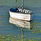 Goolwa marina, Australia by Ali Brown