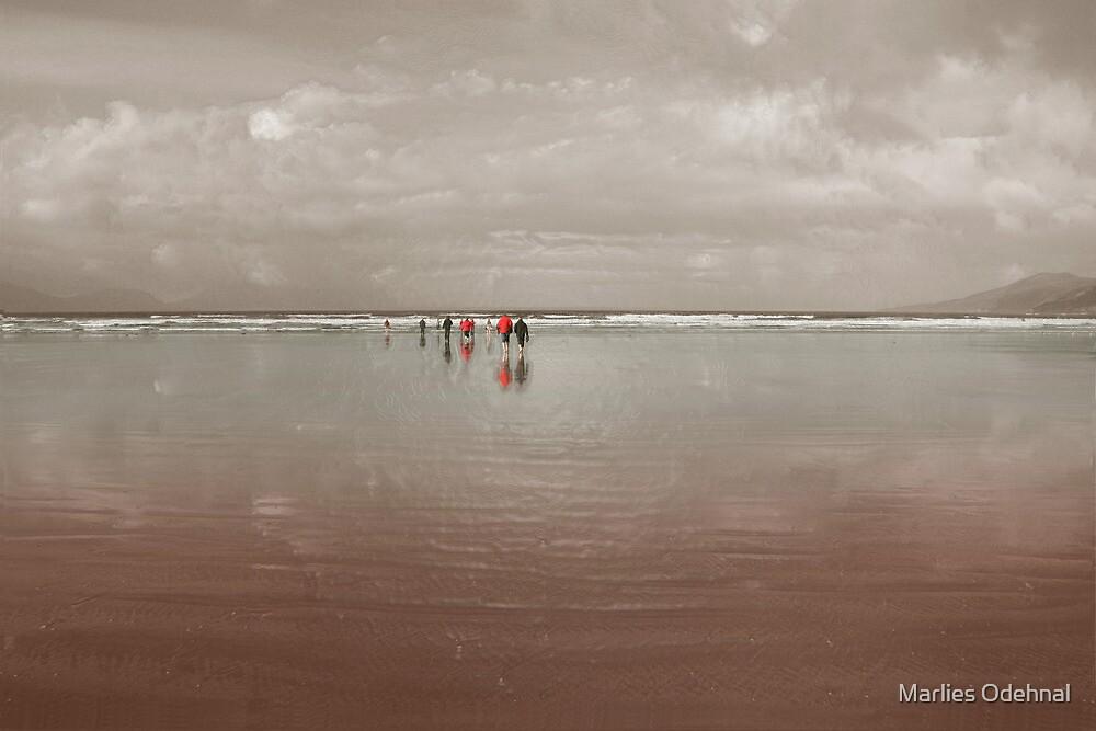 Rainy Ireland - day 3 by Marlies Odehnal