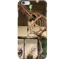 Wonderful Tyrannotitan iPhone Case/Skin