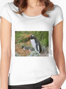 Gentoo Penguins on the Nest Women's Fitted Scoop T-Shirt